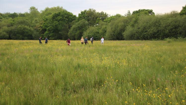 5 ème édition du Concours Agricole des prairies fleuries/Mai 2018