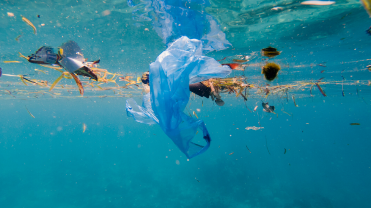Un projet européen de 14 million d'euros pour lutter contre la pollution plastique !